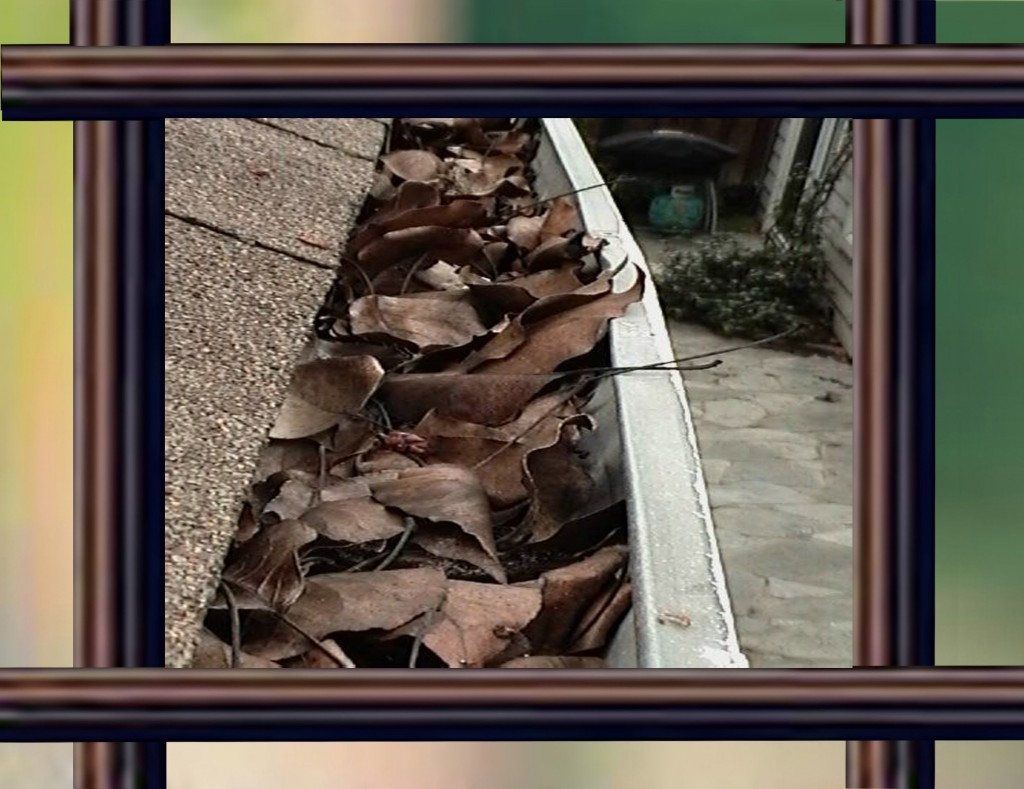 Dirty Gutters?  Call for a Free Estimate!